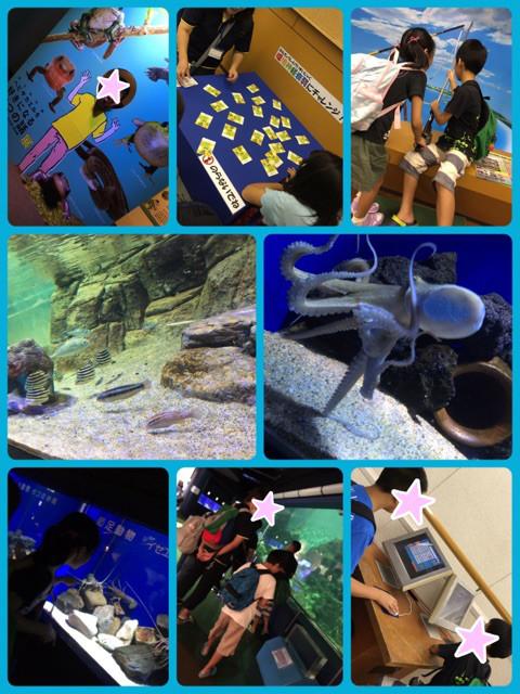 水族館や科学館など外出体験を通じて集団行動を学びます!